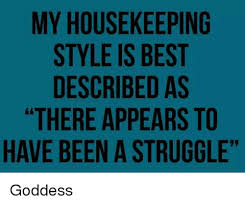 Housekeeper Meme - my housekeeping style is best described as there appears to have
