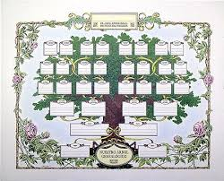the 25 best family tree projects ideas on family tree