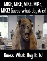 Wednesday Hump Day Meme - happy hump day quotes pinteres