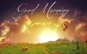 morning wonderful wishes image for whatsapp morning