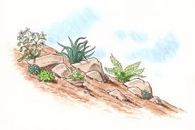 Rock Garden Plan How To Plan A Rock Garden Howstuffworks