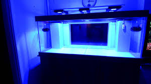 Reef Aquascape Designs Reef Tank Update Aquascaping Ideas Youtube