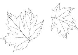 free download fall leaves coloring pages 94