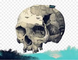 pattern drawing illustrator germany visual arts drawing illustrator creative color skull