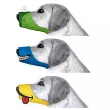funny thanksgiving dog pictures cesar millan funny muzzle tech dog and dog muzzle