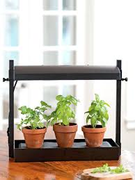 lights to grow herbs indoors indoor kitchen herb garden kitchen herb garden put this farmhouse