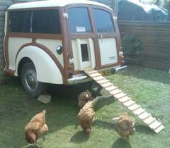 animali da cortile in centro abitato normativa sul pollaio domestico tutto quello c 礙 da sapere