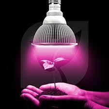 Grow Lights For Indoor Herb Garden - top shelf grows premium grow light u2013 led growing organic indoor