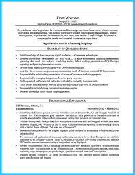 Free Online Resume Builder Best 25 Free Resume Maker Ideas On Pinterest Online Resume Career