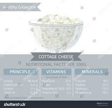 Nutrition Facts For Cottage Cheese by Cottage Cheese Health Benefits Vector Illustration Stock Vector