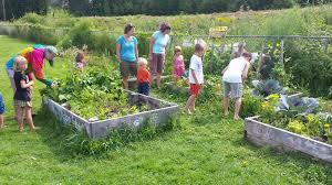 garden family gardens for learning u2014 vermont community garden network