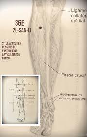 accouchement si鑒e voie basse acupuncture grossesse si鑒e 55 images 8 différents types d 39