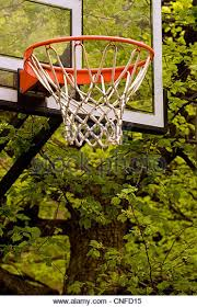 Backyard Basketball Hoops by Basketball Hoops Trees Basketball Stock Photos U0026 Basketball Hoops