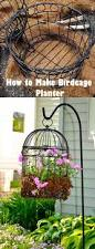 using bird cages for decor 46 beautiful ideas digsdigs sewing