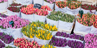 get ready for spring with the most stunning flower markets around