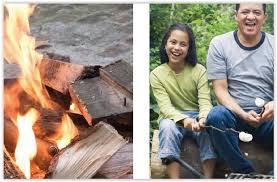 Firepit Safety Safety Tips Pit Safety Santanvalley