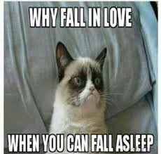 Grumpy Cat Sleep Meme - 21 best grumpy cat memes and funny quotes about love life yourtango