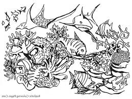 detailed dragon coloring pages coloring pages kids