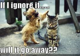 Go Away Meme - if i ignore it will it go away i can has cheezburger