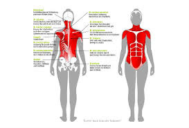 fußheberschwäche nerv ischias schmerzen beschwerden im unteren rücken joggen