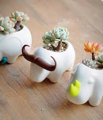 animal planter 50 unique animal planters to help you bring nature indoors