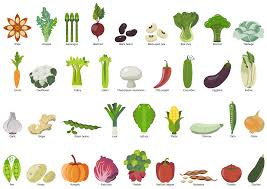 pictures of vegetables