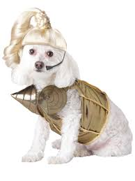 Halloween Costumes Animal by Madonna Dog Costume Madonna Costumes And Dog