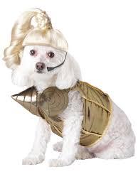 madonna dog costume madonna costumes and dog