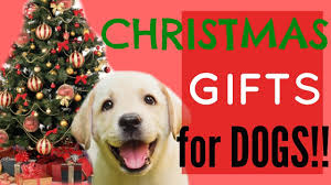 christmas gifts for dogs youtube
