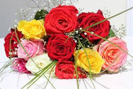 Cut Flower Garden by Free Images Petal Love Pink Bouquet Of Flowers Bouquet Of