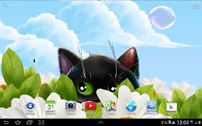 cute halloween kitten wallpaper cute kitten live wallpaper android apps on google play
