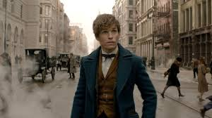 Harry Potter Movies by Fantastic Beasts U0027 Newt Scamander Actually Featured In The Harry