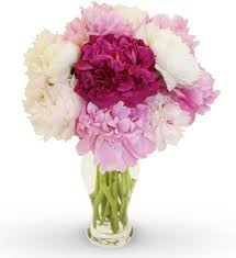 peonies flower delivery celebrate with peonies from flyboy naturals peonies bouquet