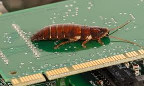 Flying Cockroach Meme - sony s ps4 can become infested with cockroaches daily mail online