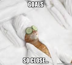 So Close Meme - goals so close pered cat meme make a meme
