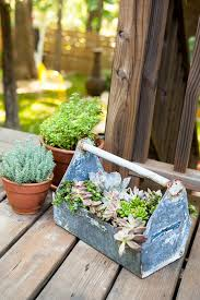 cactus landscape ideas home design and decor reviews