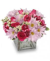 florist ocala fl thoughtful expressions arrangement in ocala fl that s it florist