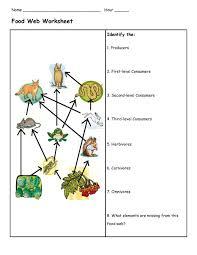 food chains and webs worksheet worksheets