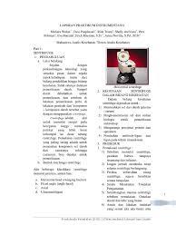 cara membuat laporan praktikum elektronika laporan praktikum instrumentasi i