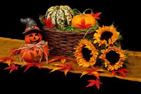 free stock photo of two small halloween pumpkin jack o lantern