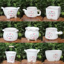 popular succulent plants in pot buy cheap succulent plants in pot