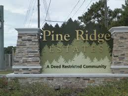 5 reasons pine ridge estates rocks david collins era citrus