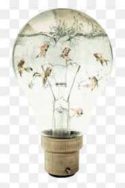 Flower Light Bulbs - the light bulb in the chest png and vector for free download