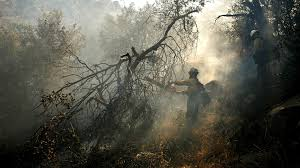 Fire Evacuations Stevens County by Brush Fire Near Lake Isabella Prompts Mandatory Evacuations La Times