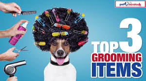 Overstock Com Pets Top 3 Pet Grooming Items Petoverstock Com Youtube