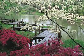 beautiful garden walkway designs garden paths youtube 1000 images