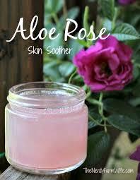 Where Can I Buy Rose Petals How To Make Rosewater Diy Rosewater Face Toner Recipe