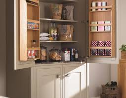 kitchen closet pantry ideas cabinet pantry ideas for small kitchens stunning pantry cabinets