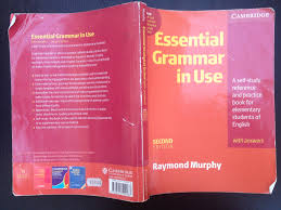 my first and favourite grammar book the tefl teach travel guide