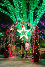 Zoo Of Lights Houston by Houston Zoo Lights U2014 Lonnie Hanzon